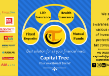 capital_tree_fb_cover.png