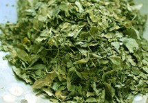 moringa_dried_leaves.jpg